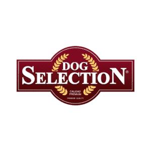 Dog Selection logo